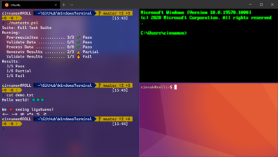 Example of customized panes in Windows Terminal
